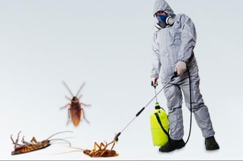 شركة رش مبيدات بالرياض-0536341330